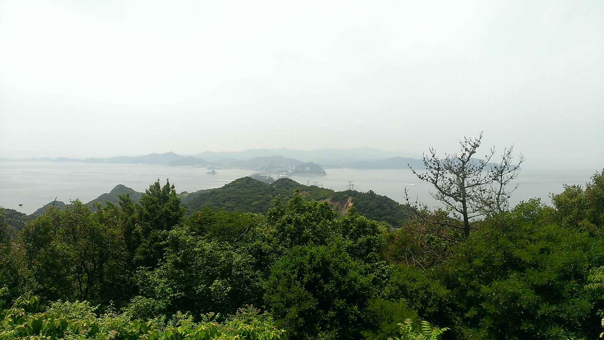 おれは社員旅行で香川県にいると思ったらいつの間にか淡路島にいた