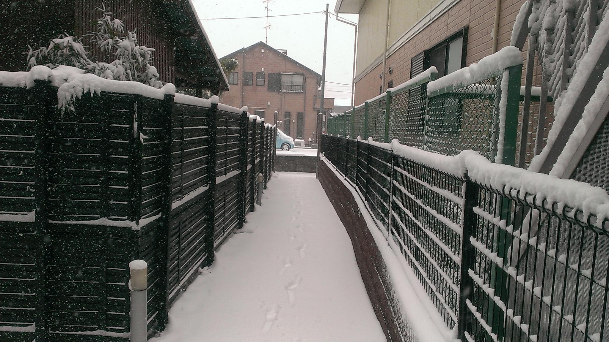 稲田堤付近のレオパレス(2014年2月8日)