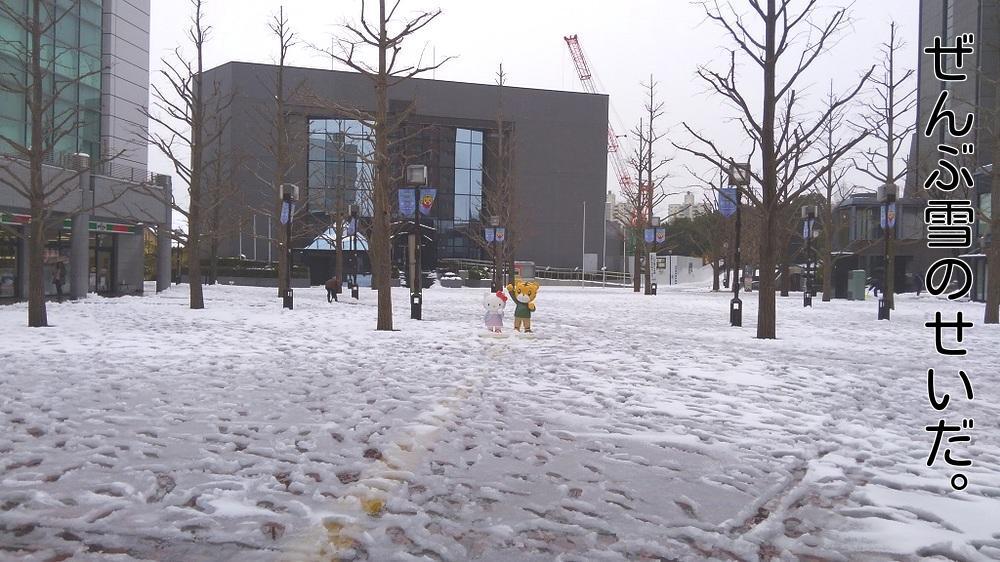 ぜんぶ雪のせいだ