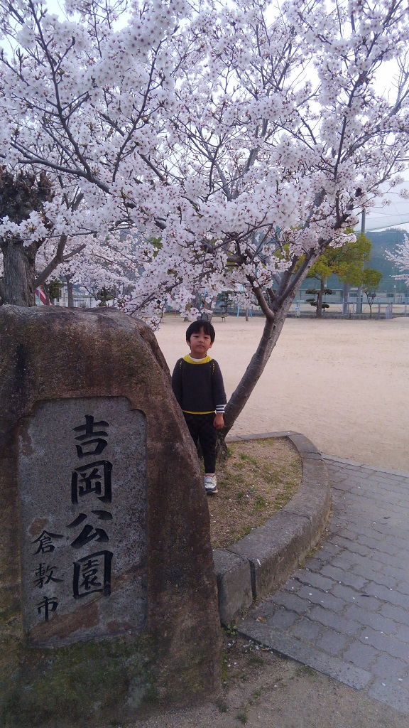 春先の吉岡公園